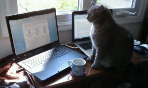The cat, the coffee, and the computers