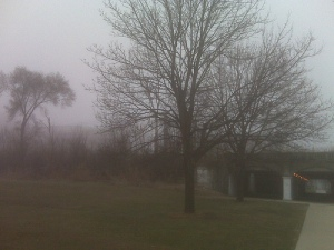 Chicago fog, by Flickr user Ange23