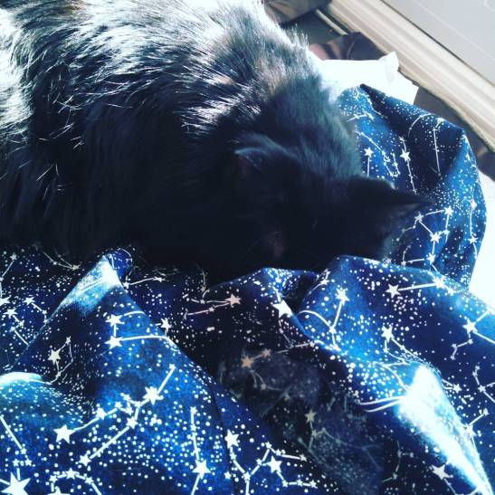 Mr Ban sleeps on the constellation dress while I hand-stitch the bias binding on the armholes.